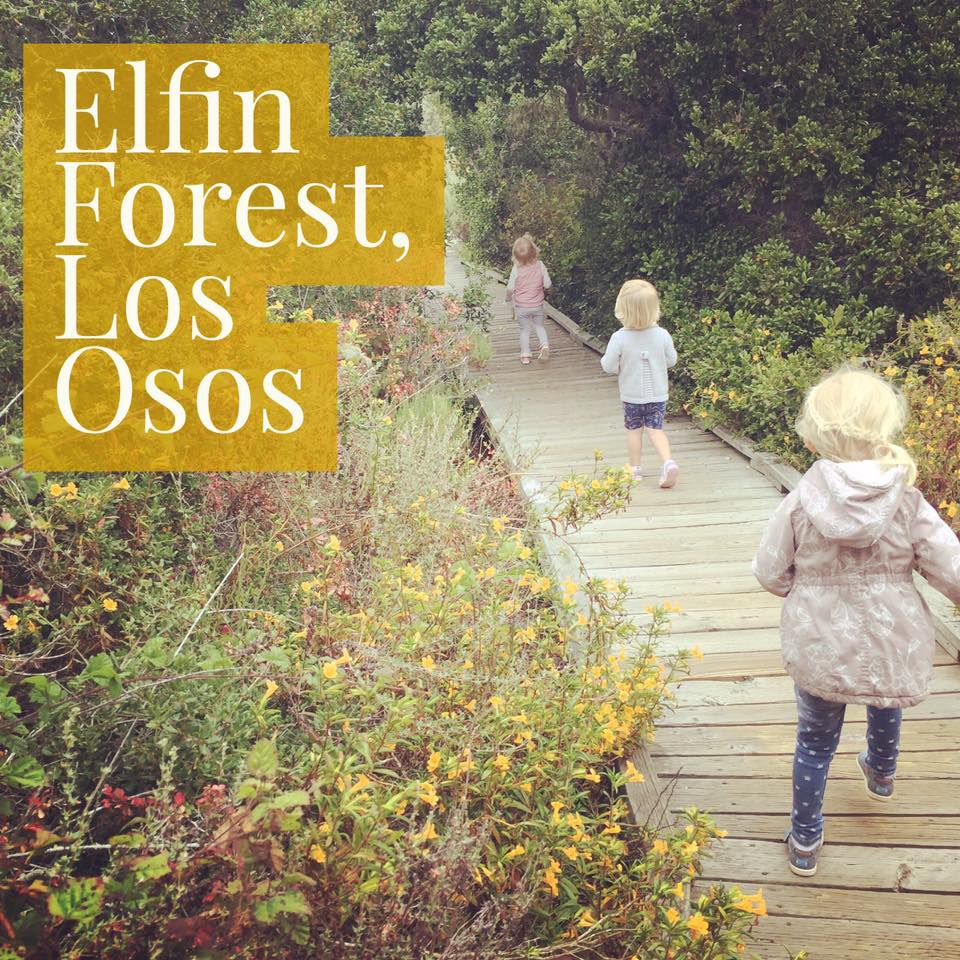 The El Moro Elfin Forest in Los Osos boasts a boardwalk hike for the kids.