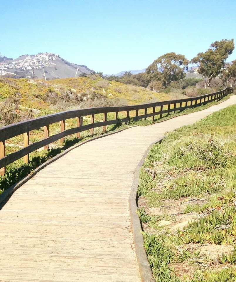 Meandering boardwalk along the Meadow Creek Trail just outside the Pismo Beach Monarch Butterfly Grove in San Luis Obispo County California.