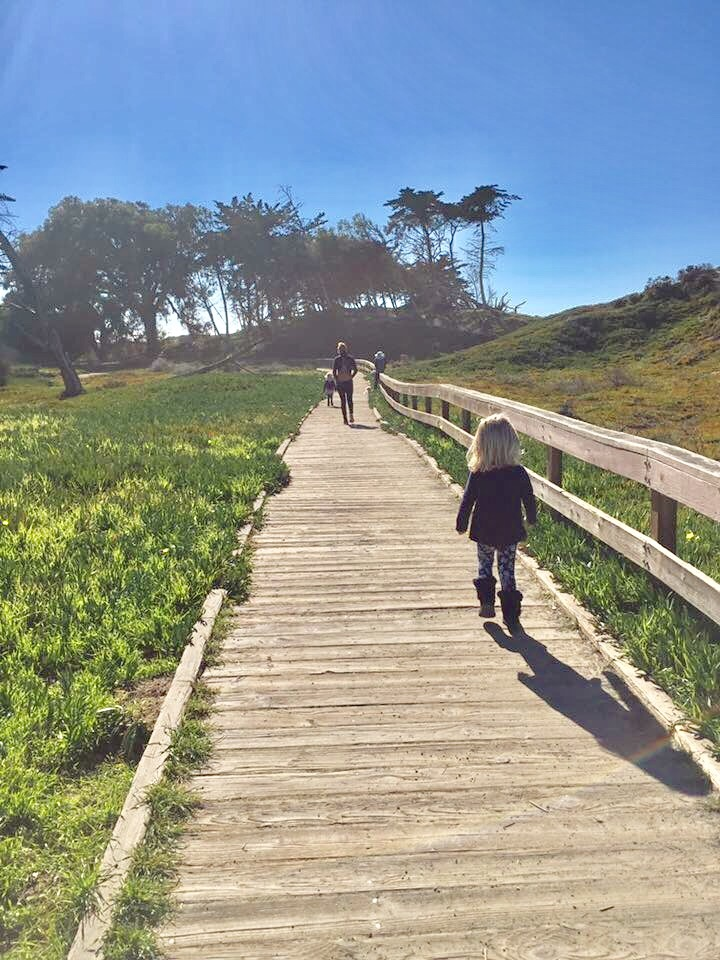 Families trek the Meadow Creek Trail boardwalk near the Pismo Beach Monarch Butterfly Grove in San Luis Obispo County California.