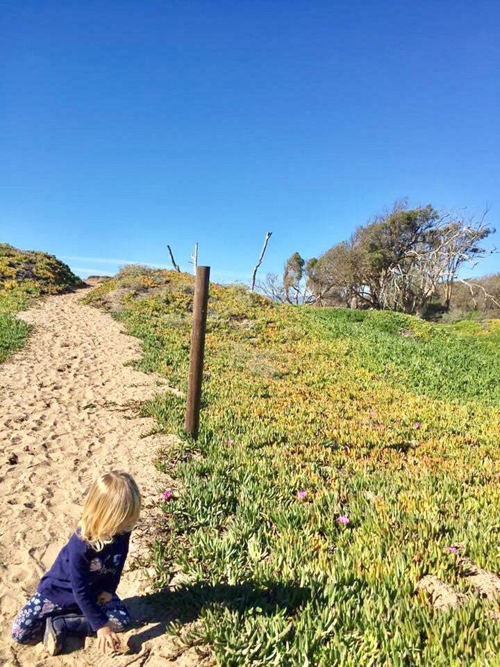 Meadow Creek Trail in Pismo Beach leads to the ocean.