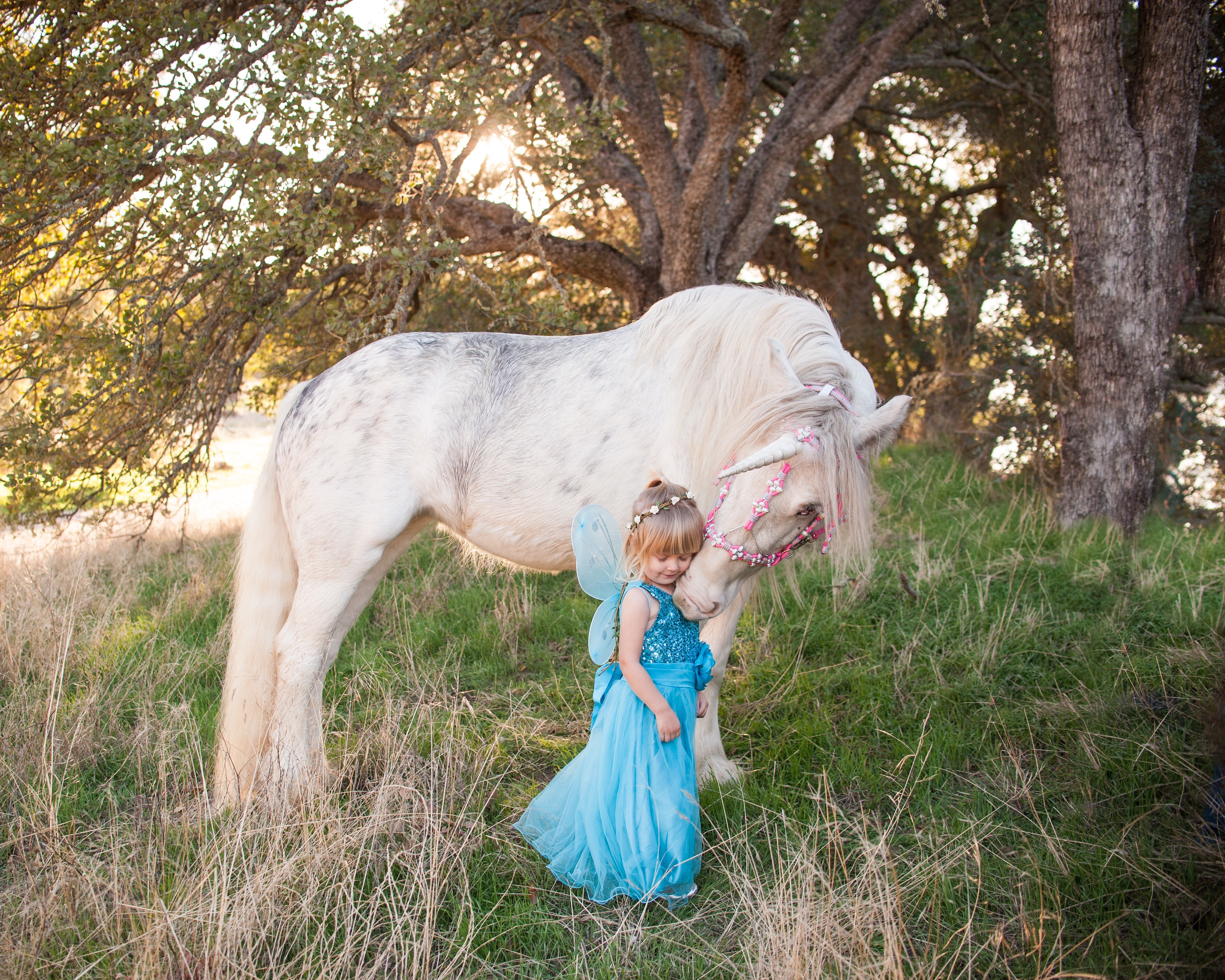 Magical unicorn nuzzles toddler dressed as a fairy princess in unicorn photoshoot in Creston, California. Unicorn hugs.
