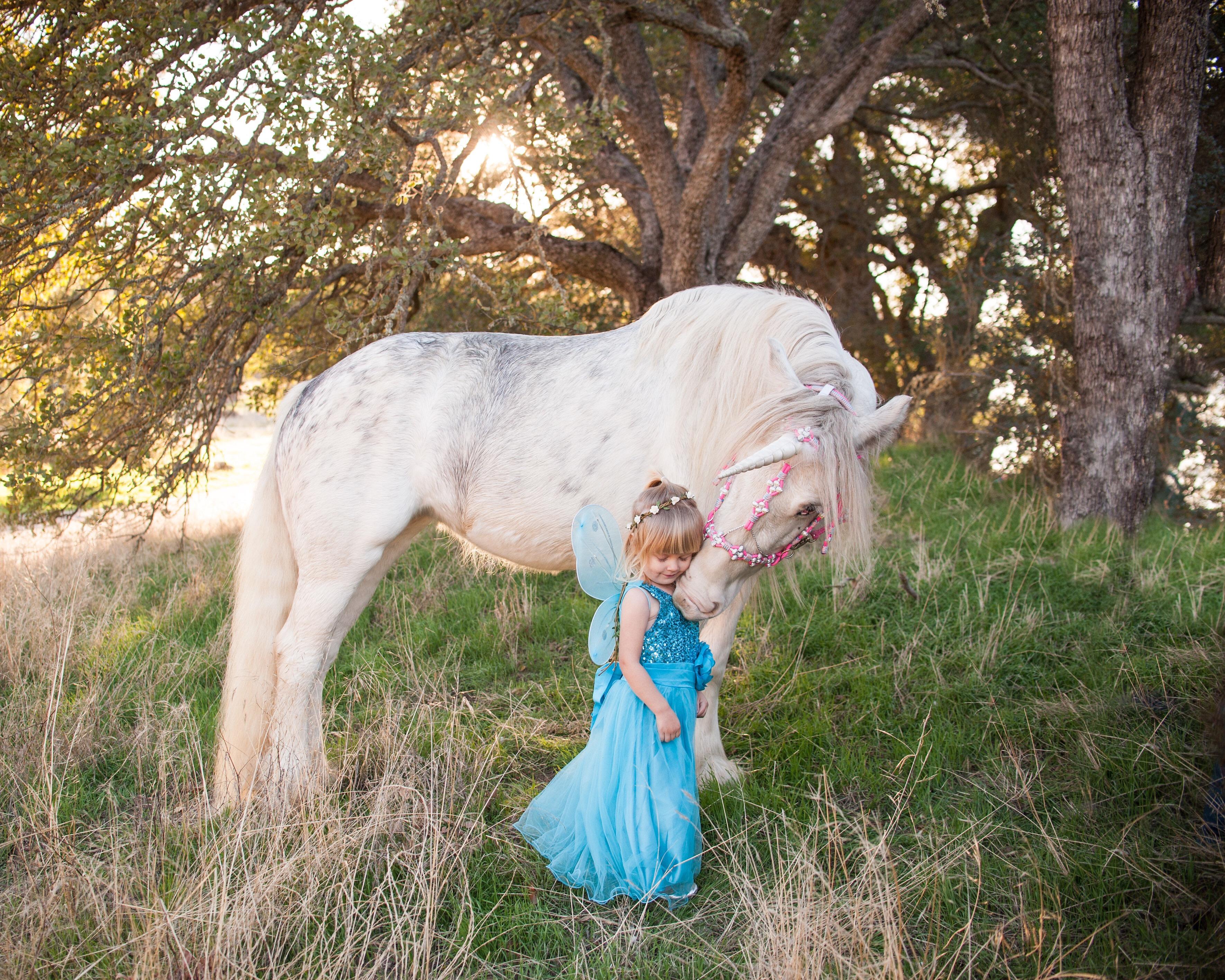 Magical unicorn nuzzles toddler dressed as a fairy princess in unicorn photoshoot in Creston, California. Unicorn hugs.