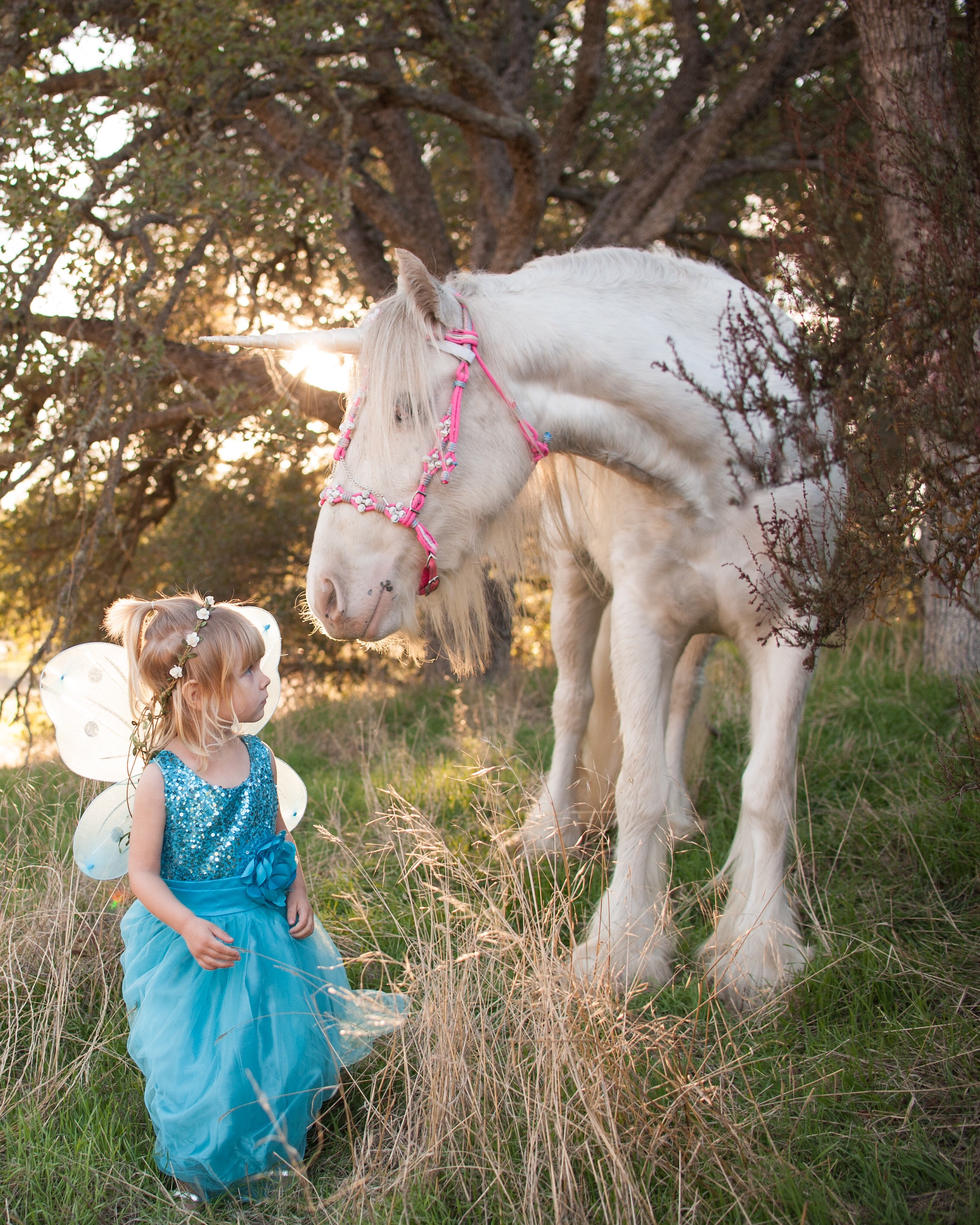 Little princess in fairy wings and a sparkle dress poses with magical unicorn in Creston, California