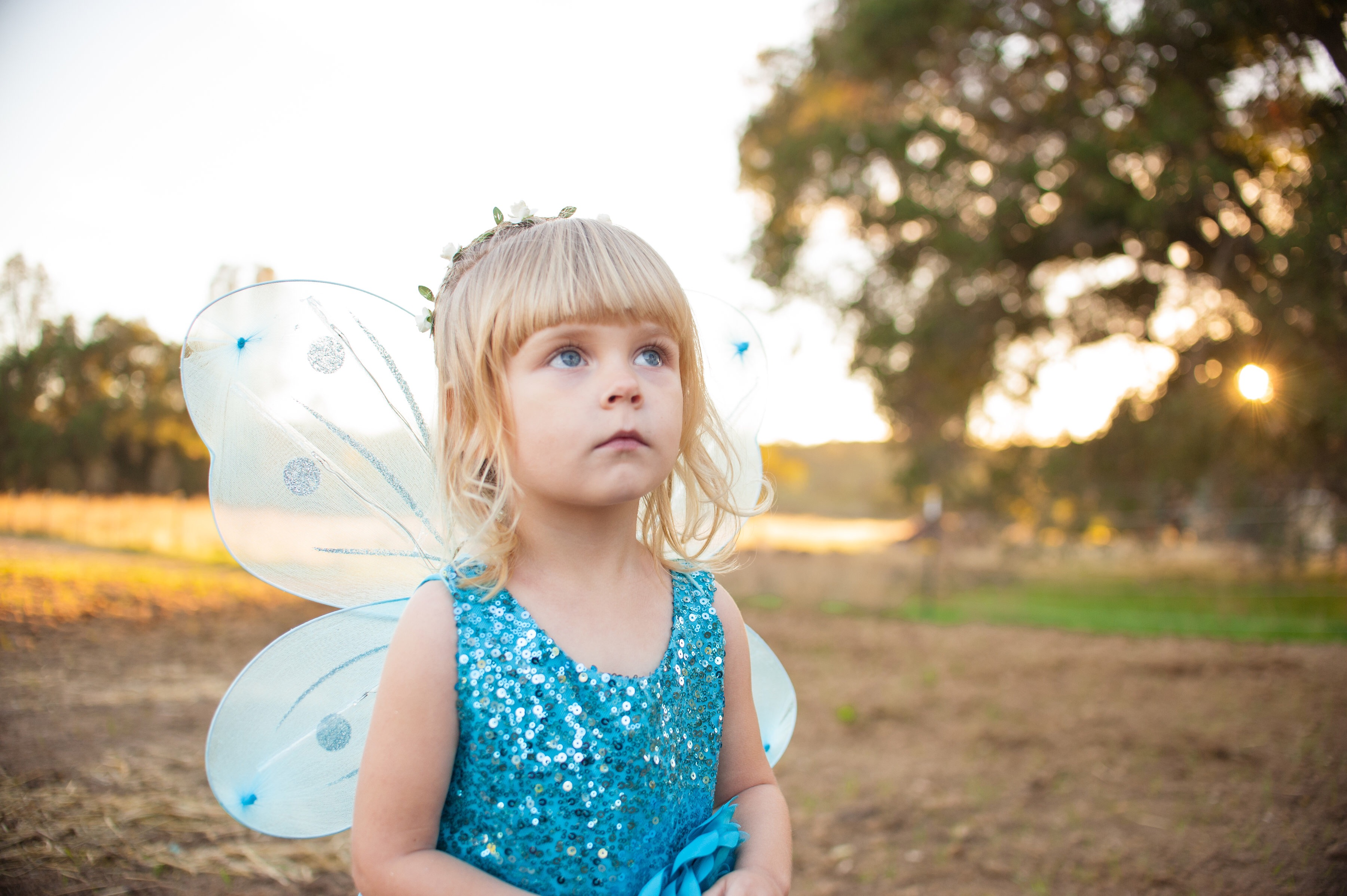 Fairy princess with translucent blue wings looks up at the sky