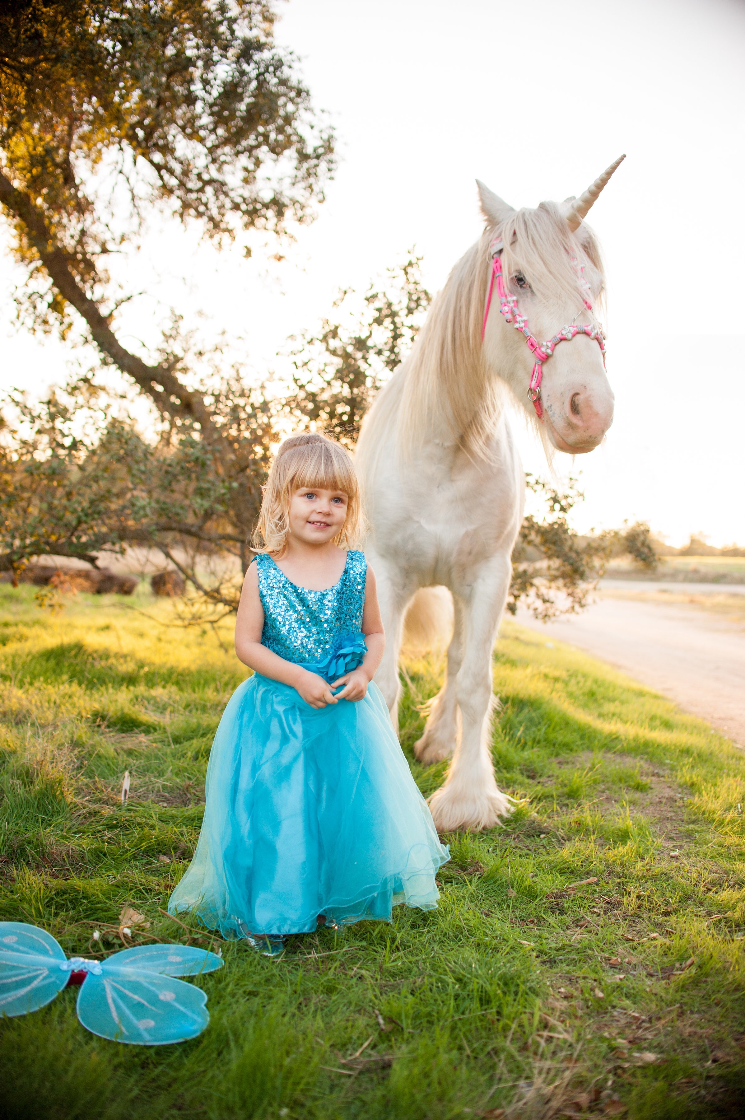 Toddler dressed as a fairy princess smiles alongside a unicorn in a magical photoshoot in Creston, California.