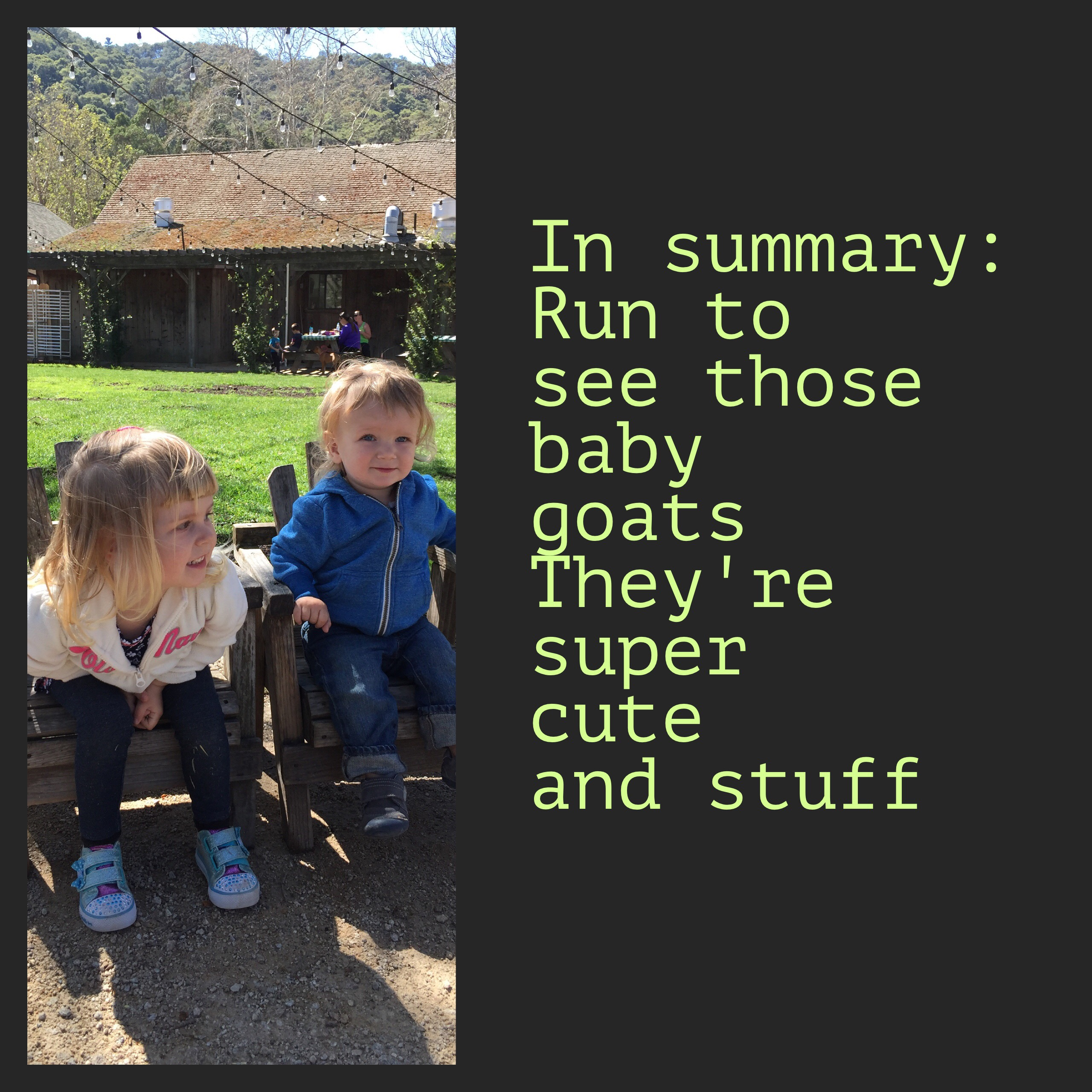 Summary slide of why you should take children to see the baby goats at Avila Valley Barn in San Luis Obispo.