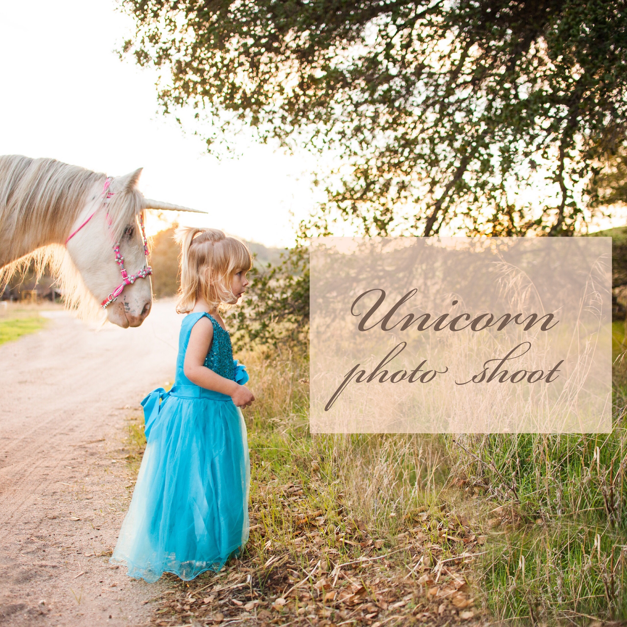 Toddler dressed as a fairy princess poses with a unicorn in a magical photoshoot in Creston, California.
