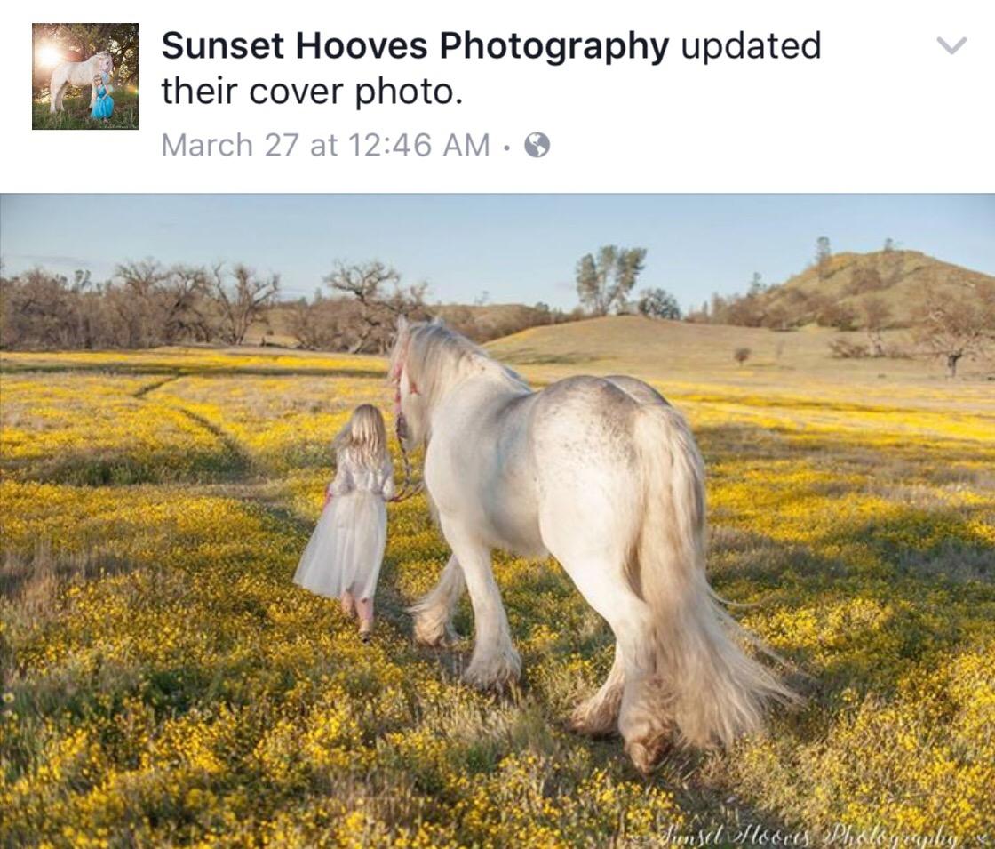 Little girl leads unicorn through California's wildflowers.