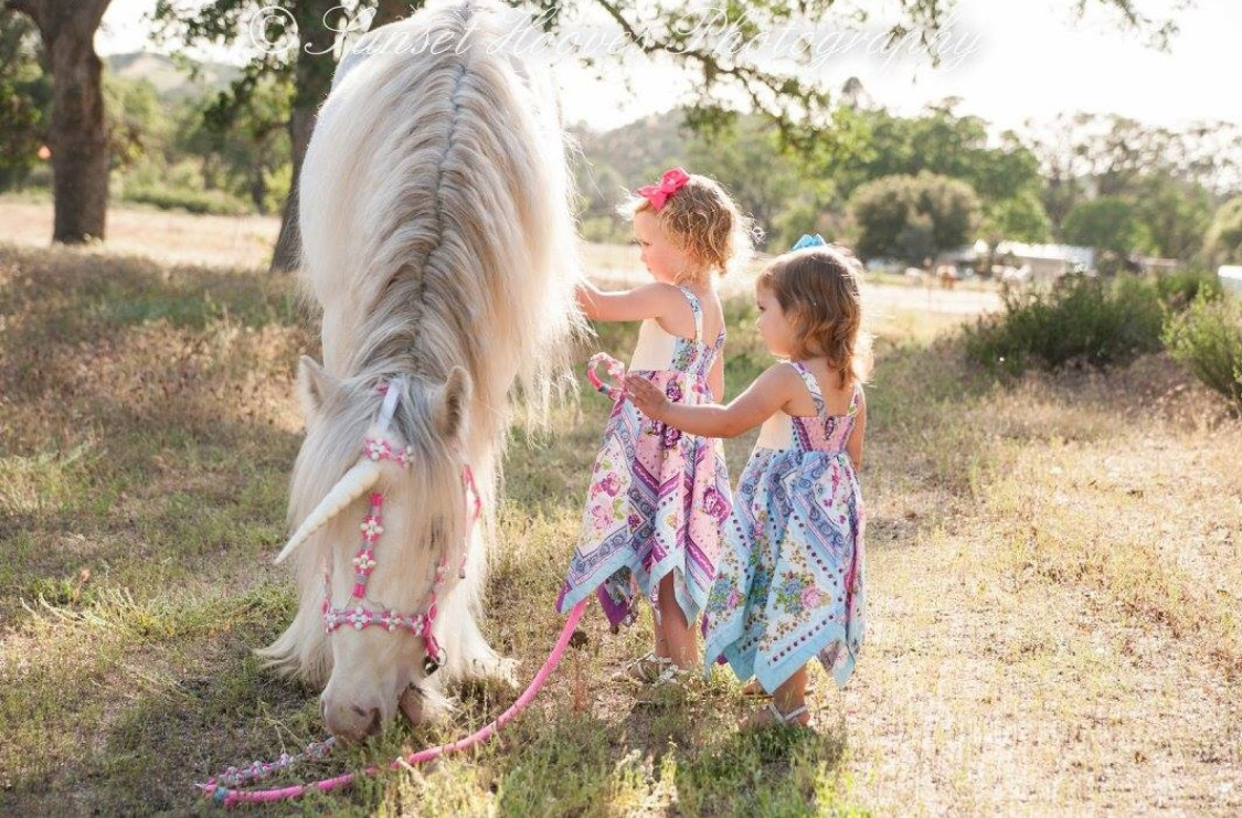 Two little girls in Kohl's dresses pose with a unicorn in magical photoshoot in Creston, California.