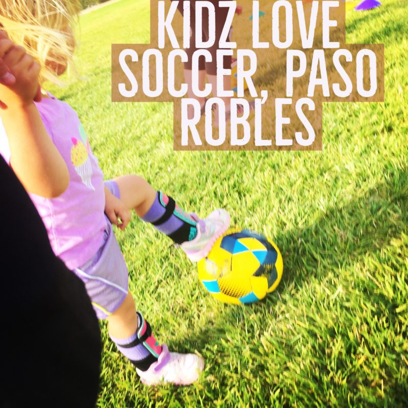 Here is a blog post about the Kidz Love Soccer Mommy/Daddy & Me class in Paso Robles California from Two In Tow & On The Go.