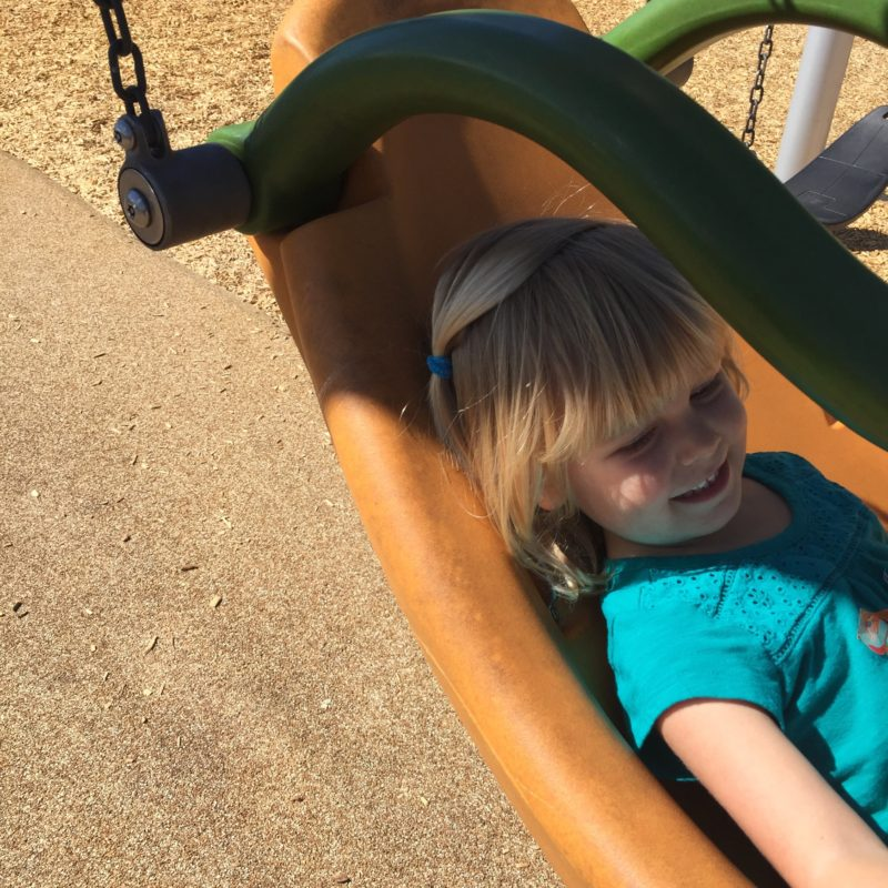 All access swing at Paso Robles Downtown City Park playground