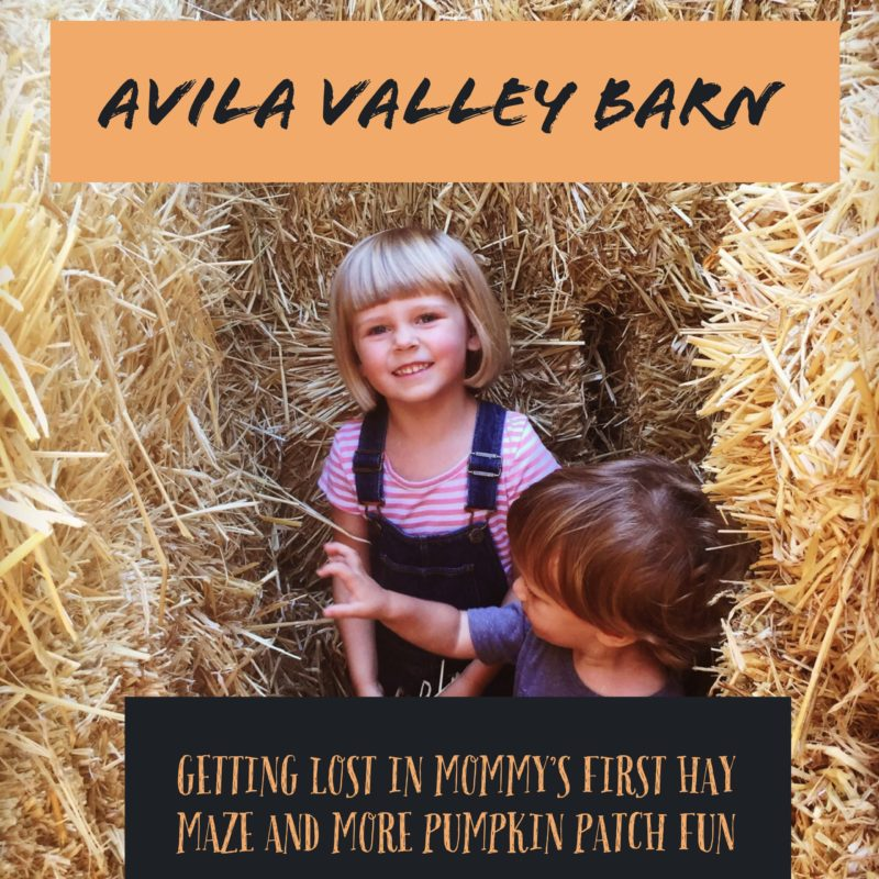 Avila valley barn Fun at the pumpkin patch