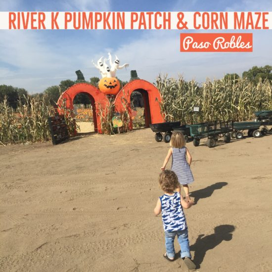River K Pumpkin Patch Paso Robles Review by Two In Tow & On The Go