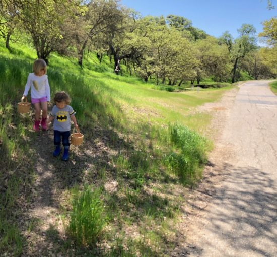 Two in Tow & On The Go Review of Centennial Trail Paso Robles