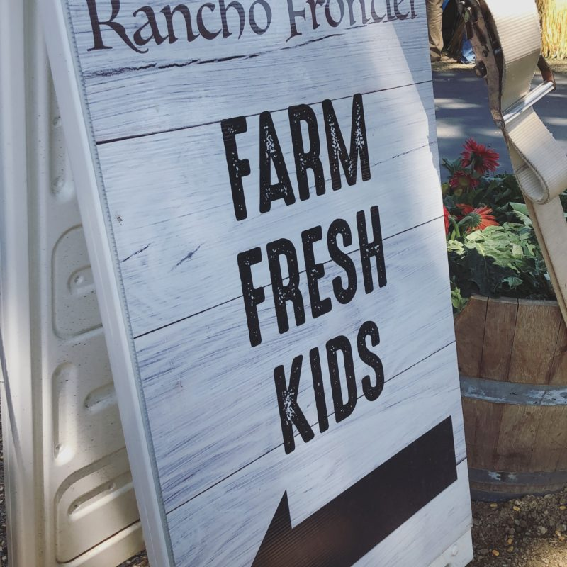 Things to do in Paso Robles with Kids During the California Mid State Fair_2