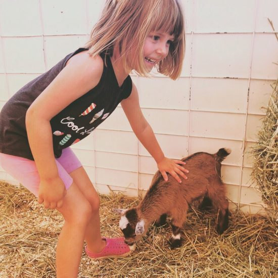 Things to do in Paso Robles with Kids During the California Mid State Fair_7