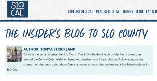 blog screenshot blue text