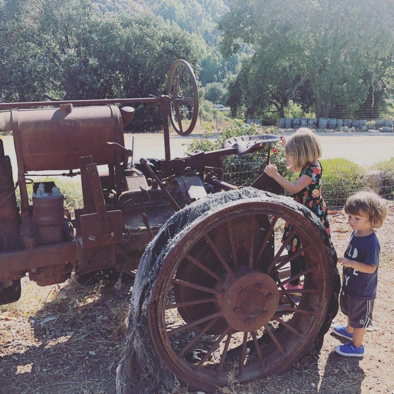 Steam engine - Motor vehicle