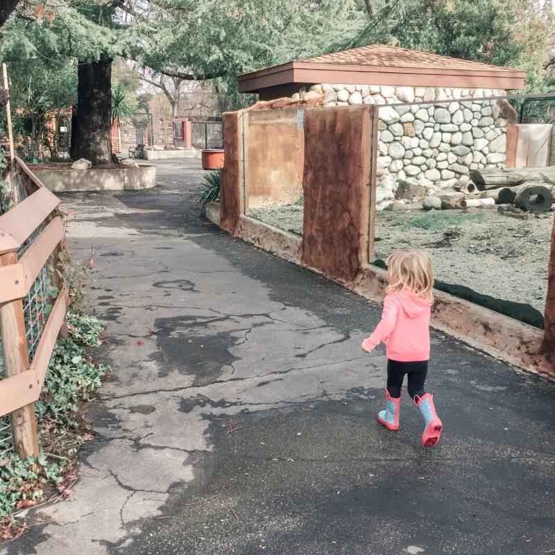 Atascadero Charles Paddock Zoo 8