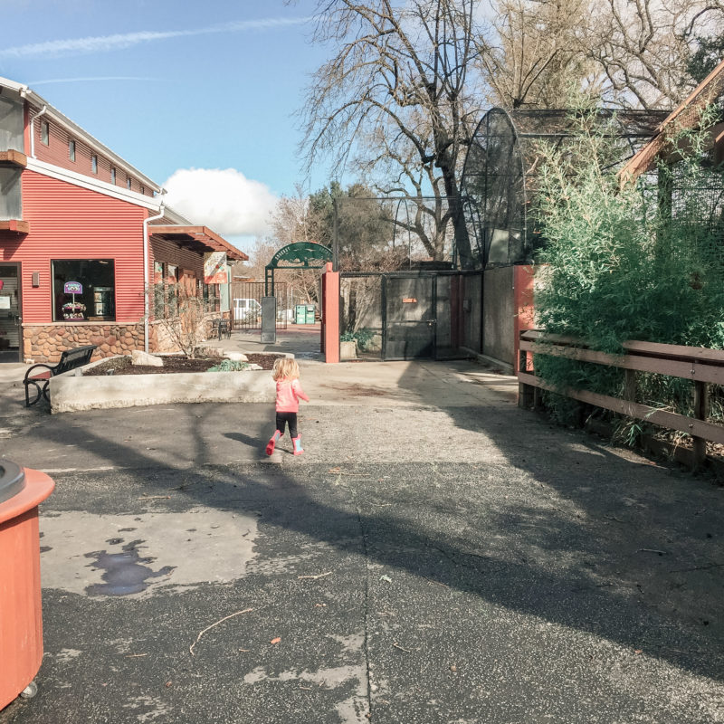 Atascadero Charles Paddock Zoo 7
