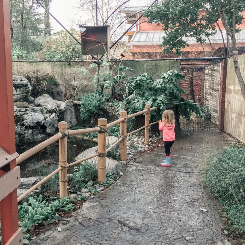 Atascadero Charles Paddock Zoo 6
