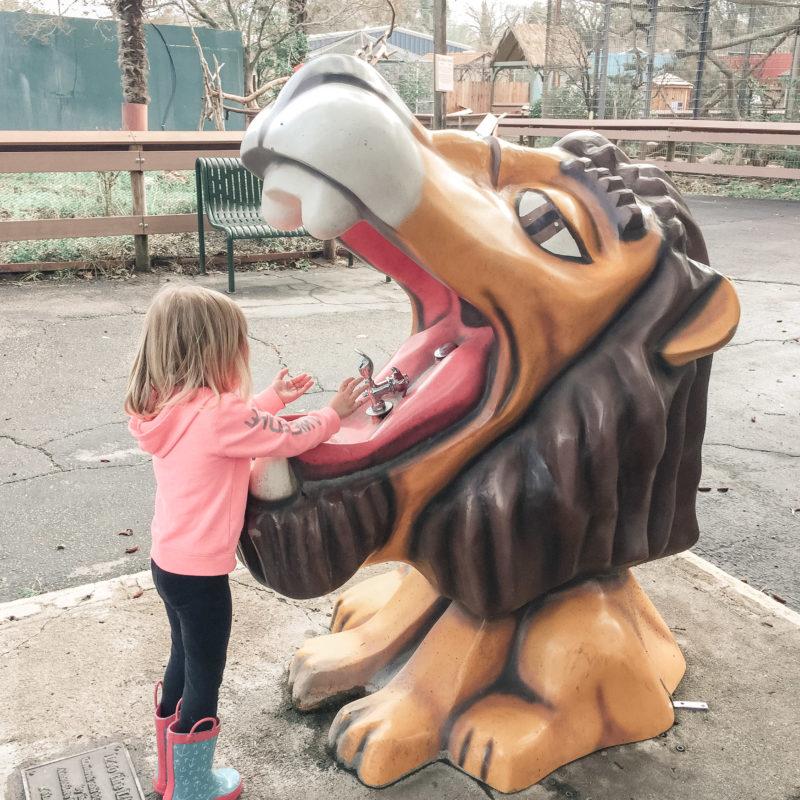 Atascadero Charles Paddock Zoo 11