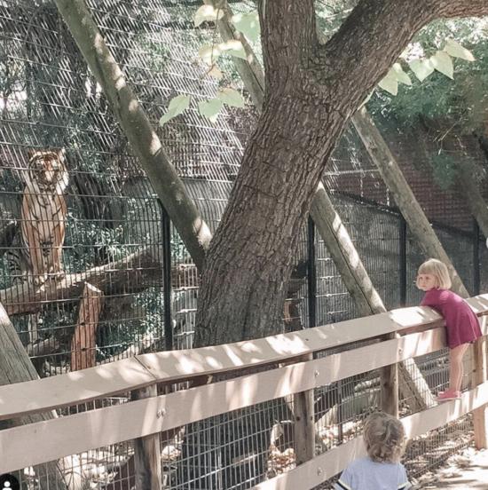 Atascadero Charles Paddock Zoo 1