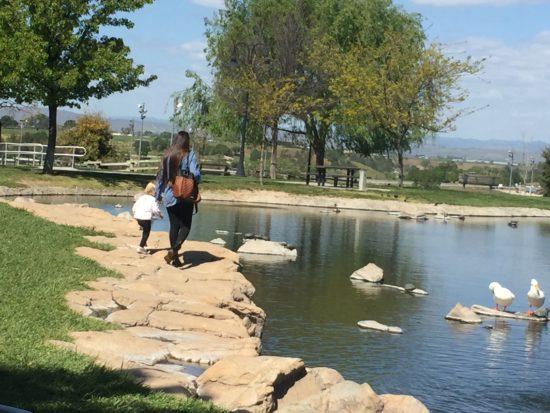 Barney Schwartz Park Lake Paso Robles Review - 4