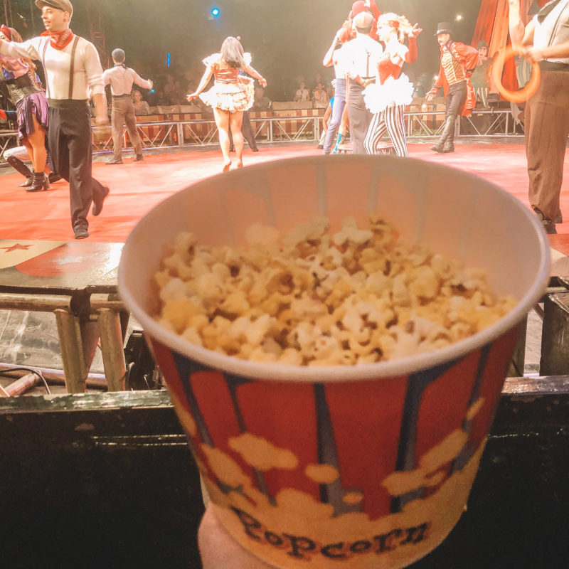 Circus Vargas Review_2