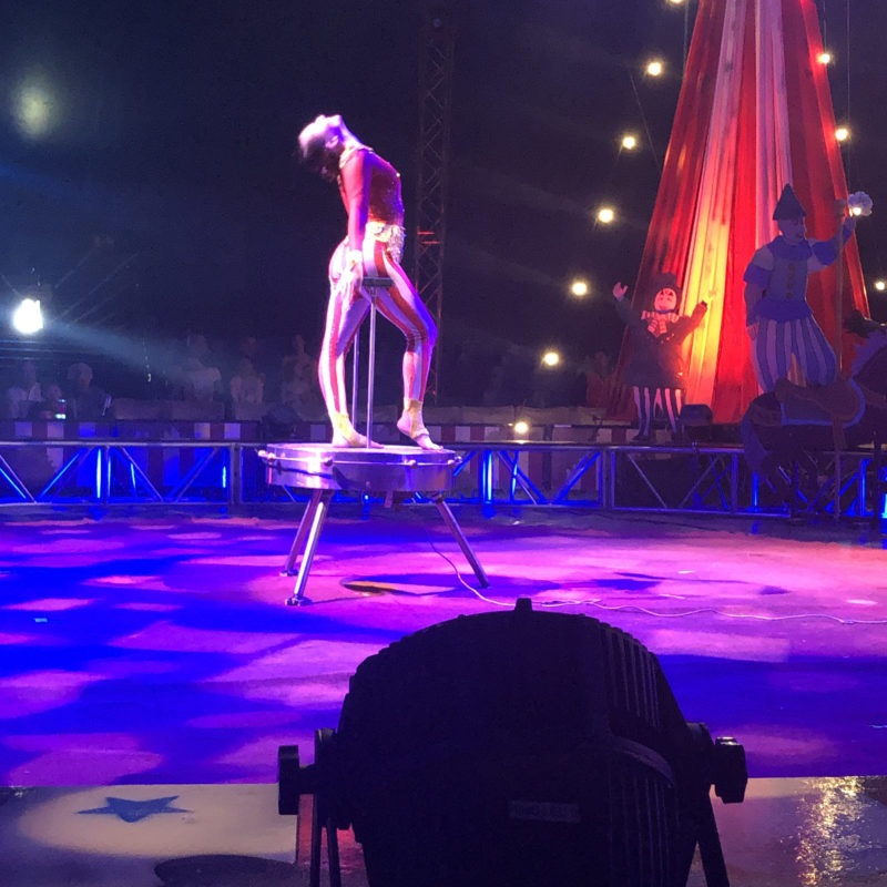Circus Vargas Review_33