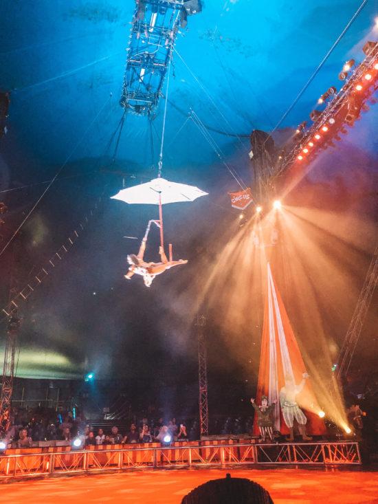 Circus Vargas Review_18