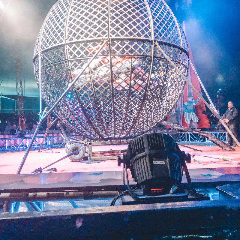 Circus Vargas Review_21