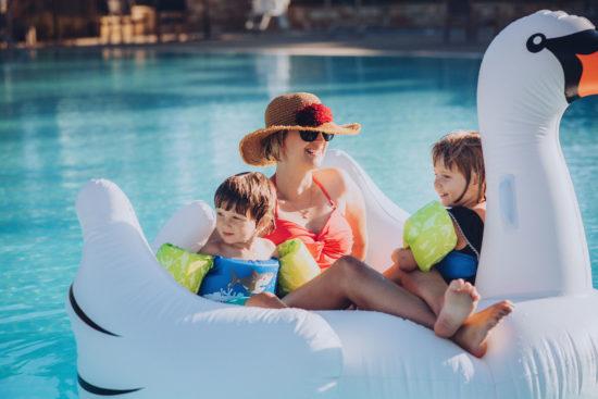 Floating swan in pool